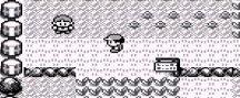 Pokemon sí ha cambiado mucho